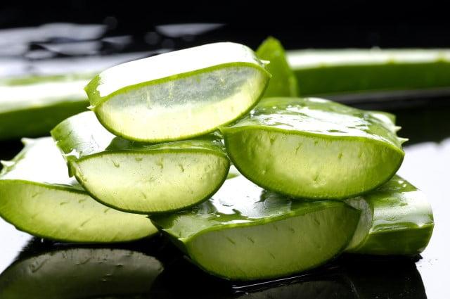 Những dưỡng chất trong lá nha đam chứa rất nhiều thành phần làm trắng