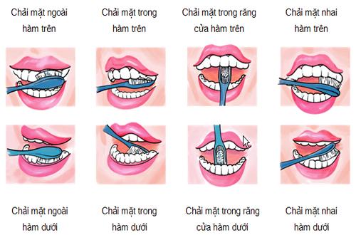 chải răng đúng cách 2