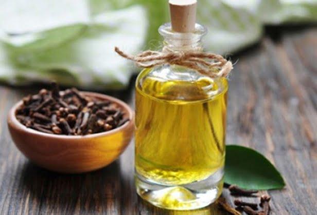 trị bệnh hôi miệng với dầu đinh hương